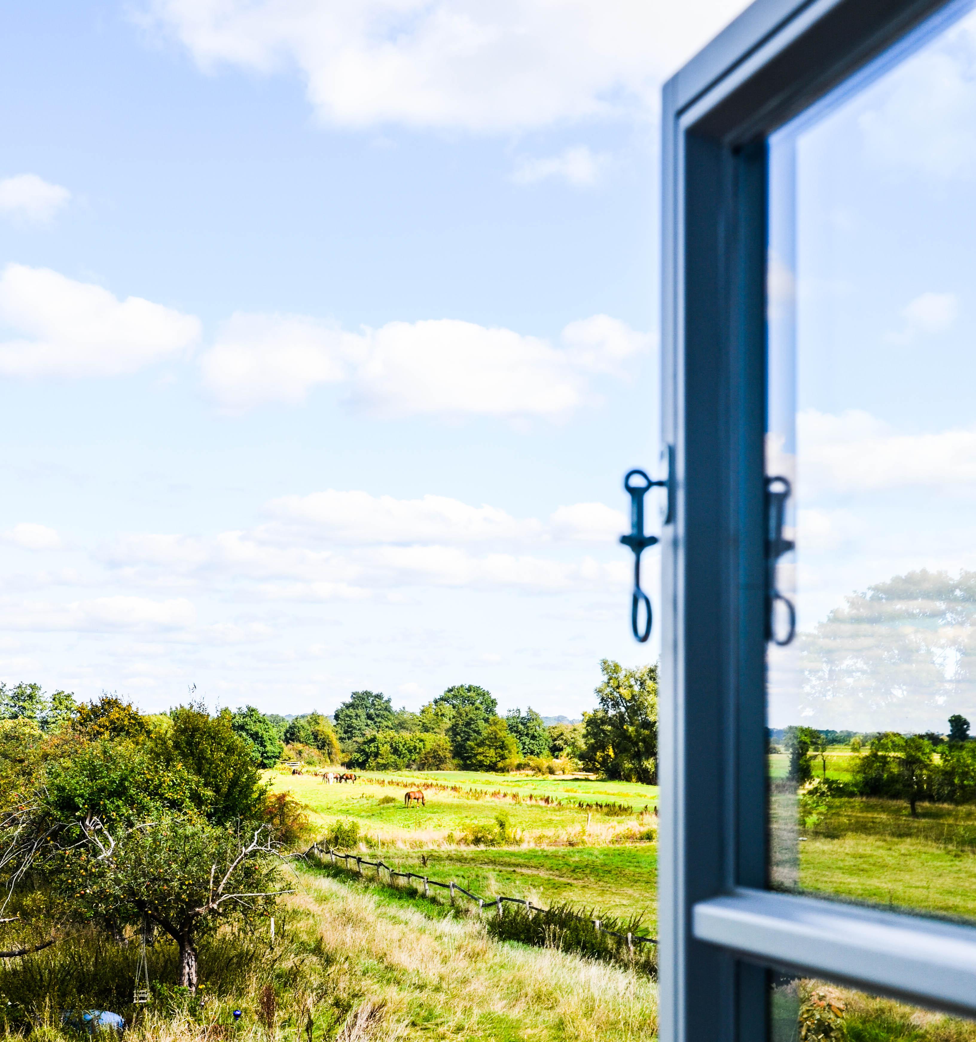 Natur, Blick aus dem Fenster,
