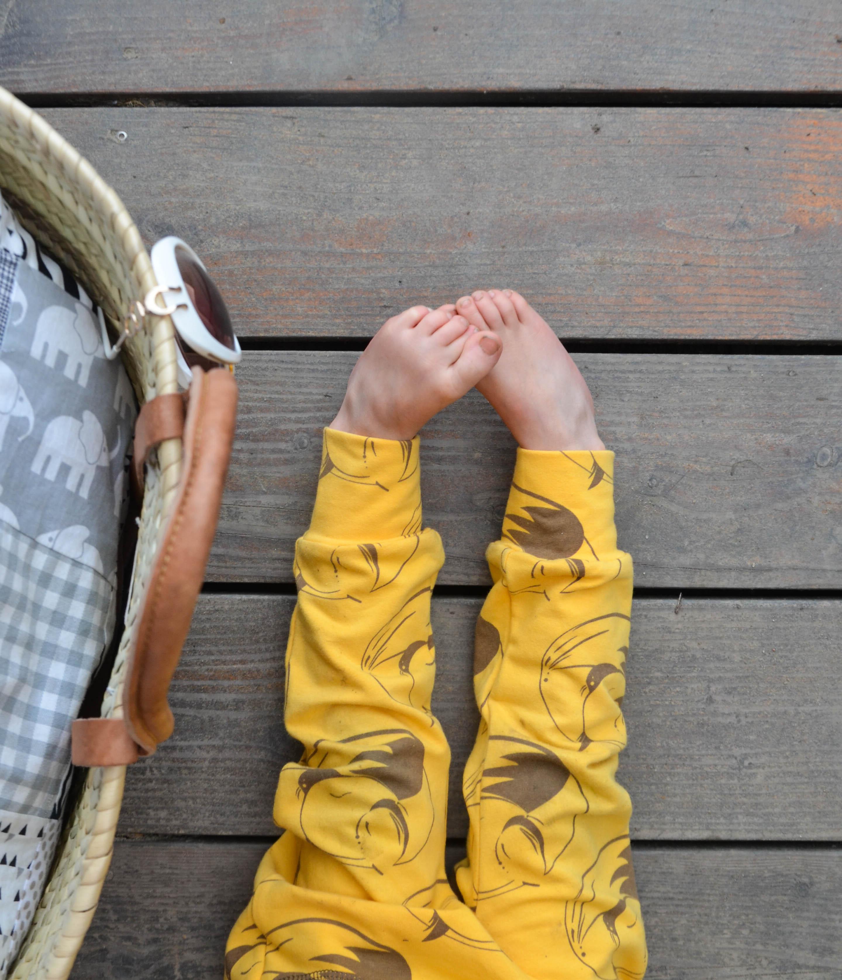 Klamotten für Jungs, Jerseypants, Fuchs,