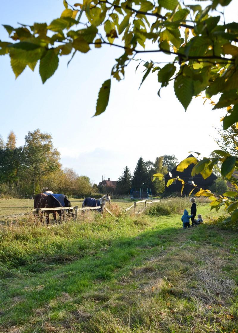 Leben auf dem Land, Herbstpicknick, Mama Blog