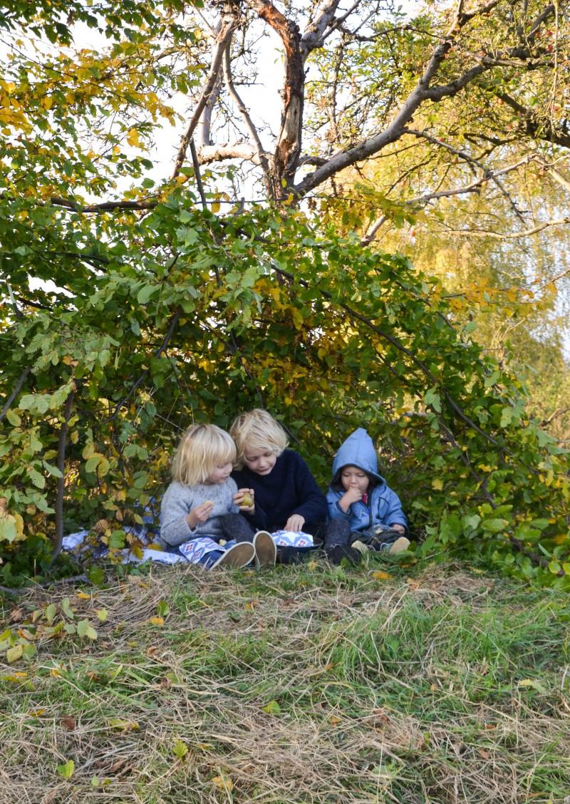 Herbstpicknick