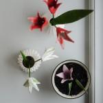 Frühling für die Fensterbank