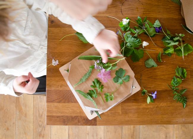 Blätter pressen, Blätterbild