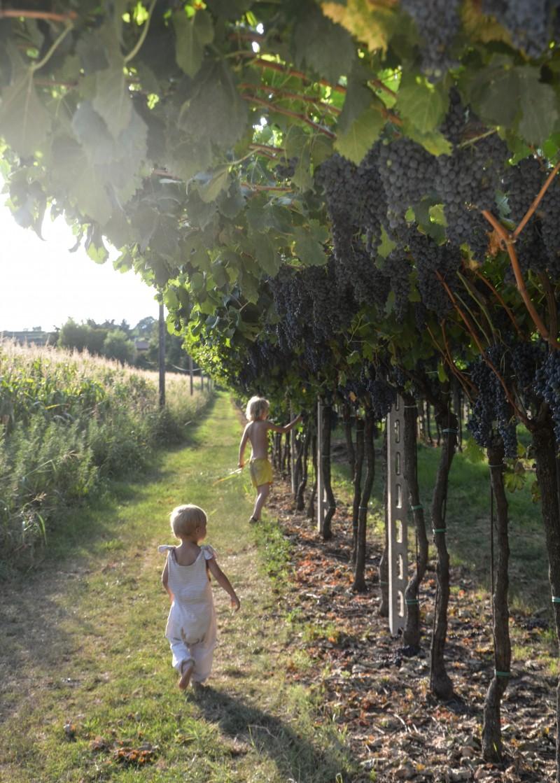 Familienurlaub, Gardasee, kinderfreundliche Unterkunft