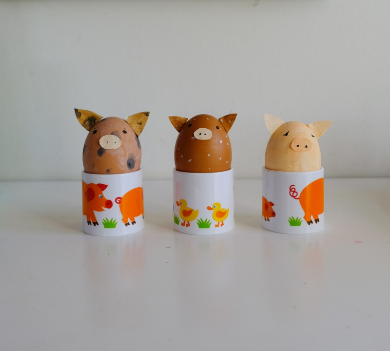 Schweineeier, ByGraziela