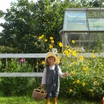 Gute Gärten: Wo die wilden Kerle, Tiere und Pflanzen wohnen ..