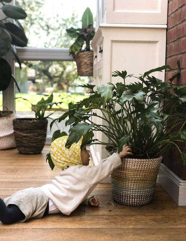 Mama Life Hack, Alltags Trick, Tipps für Mamas, Leben mit Blumen und Baby