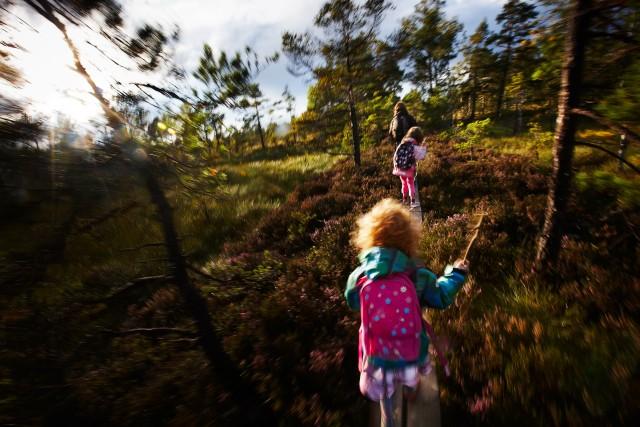 Smålands Turism / Store Mosse,