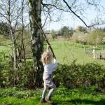 Dienstags-Diskussion: Dürfen eure Kinder Fliegen fangen?