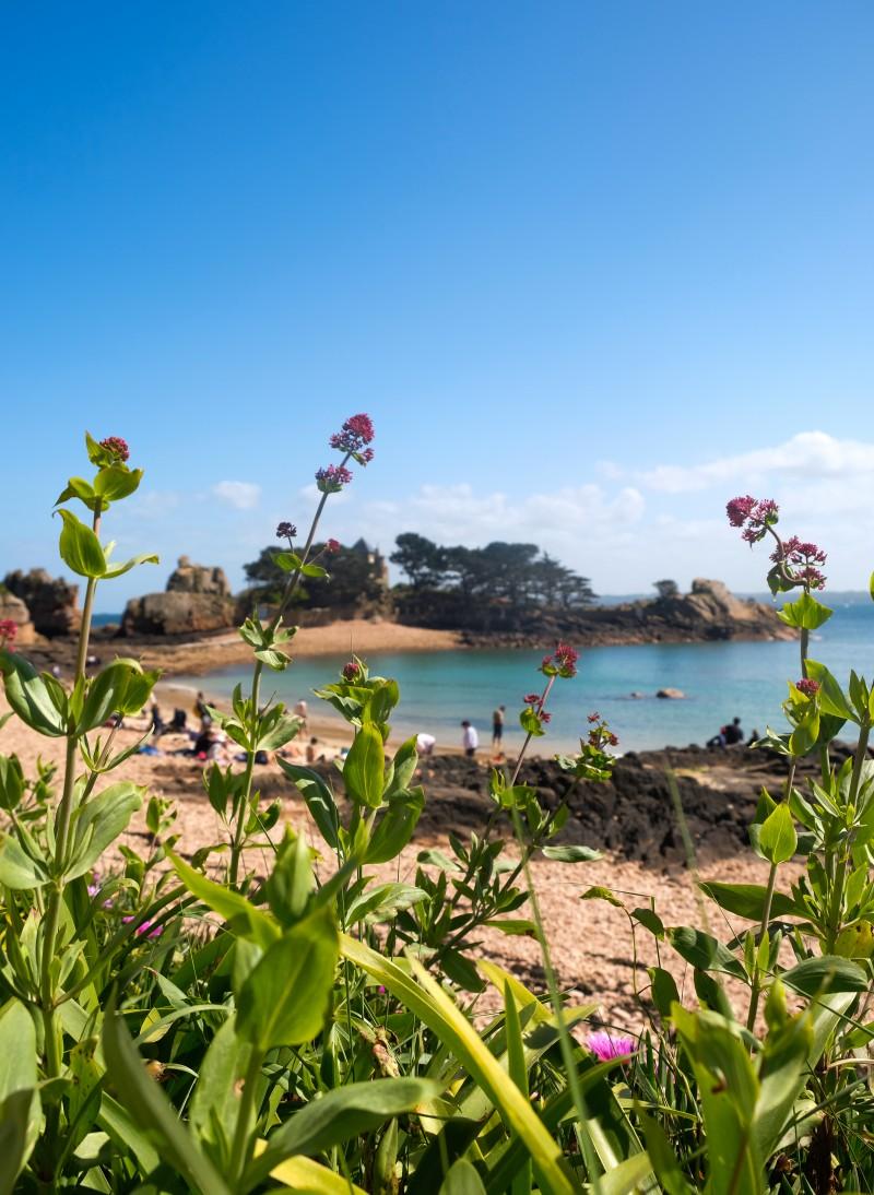 Bretagne,