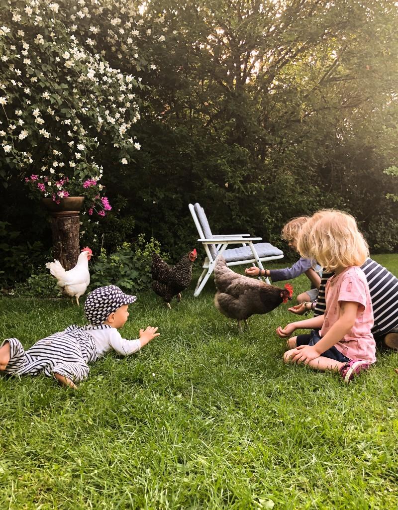 Kinder und Hühner, Hühner halten