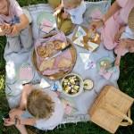 Ein spontanes Picknick unterm Apfelbaum (mit Snøfrisk Frischkäse/enthält Werbung)