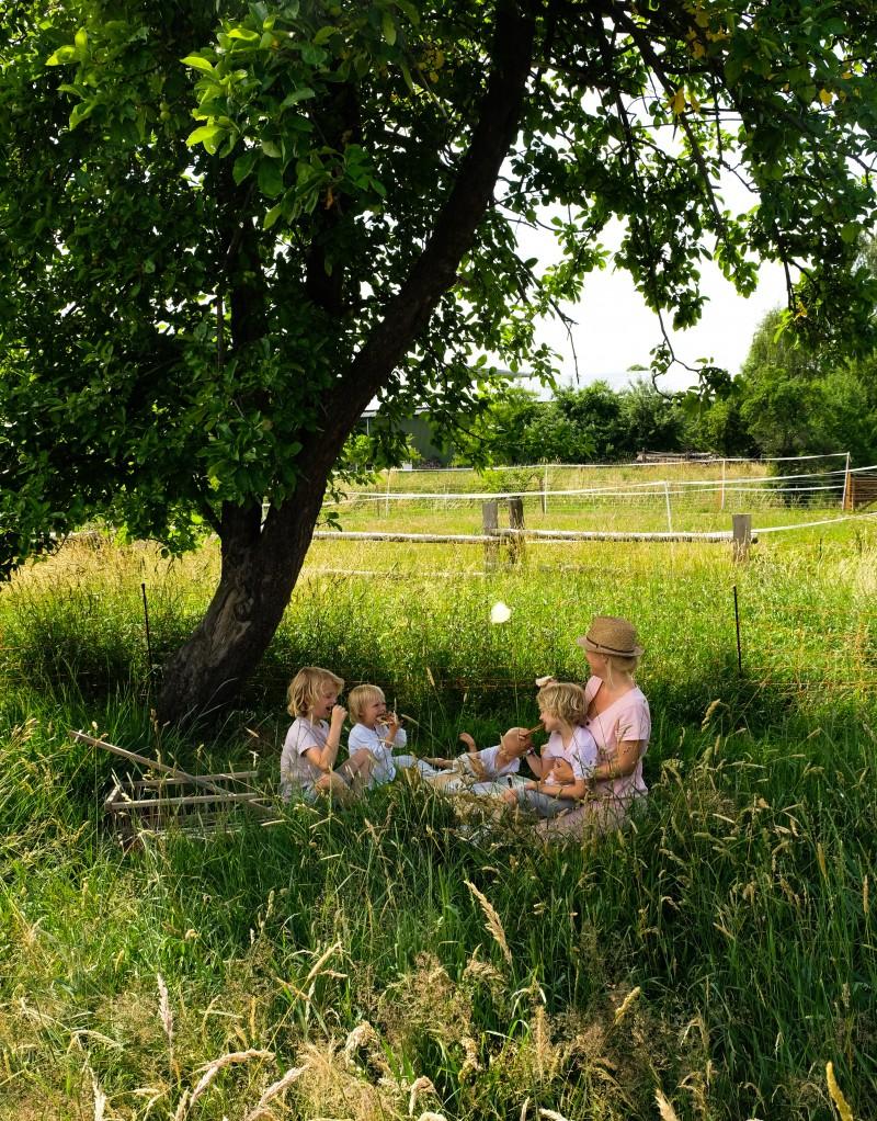 Ziegenfrischkäse, Picknick mit Kindern