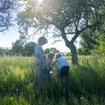Ein zauberhaftes Sommerabenteuer: Mit Kindern Schmetterlinge züchten