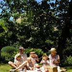Flinke Fluchten: Mit Kindern das Alte Land entdecken (enthält Werbung)