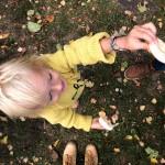 Fünf Dinge vom Wochenende #13
