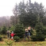 Elf alte (und neue) Weihnachtsrituale