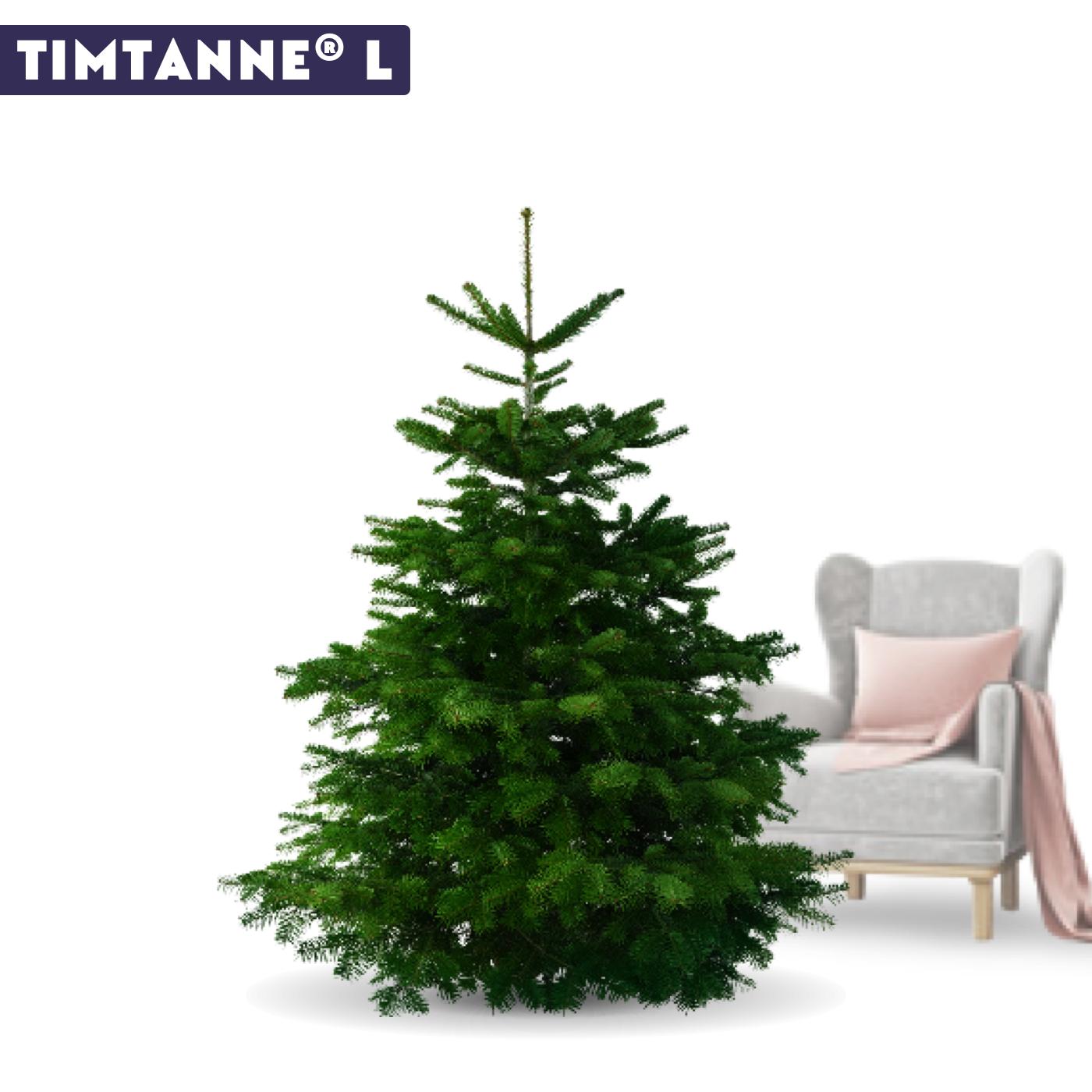 Tannenbaum per Post, Tannenbaum liefern lassen