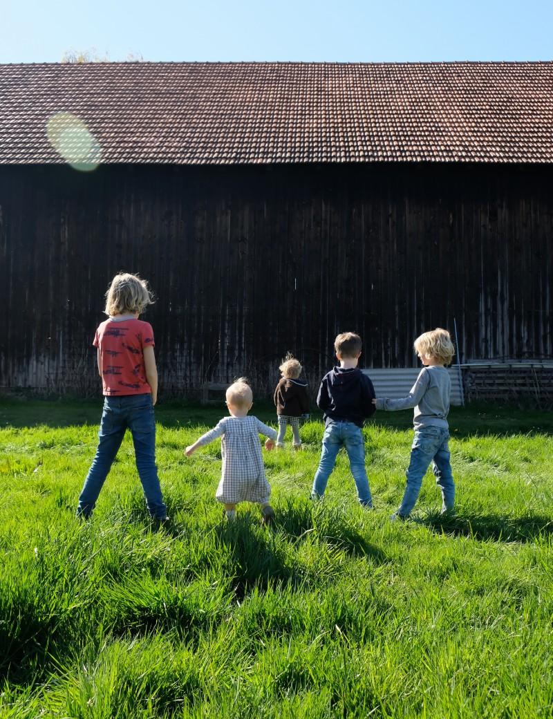 Kinderwunsch, Großfamilie