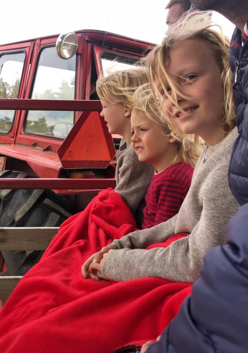Smaland, Schweden mit Kindern