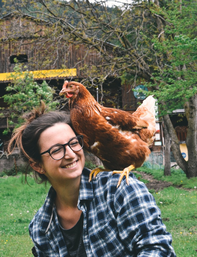 das echte Landleben, vegan leben, Bauernhof, Frau Freudig und das liebe Vieh