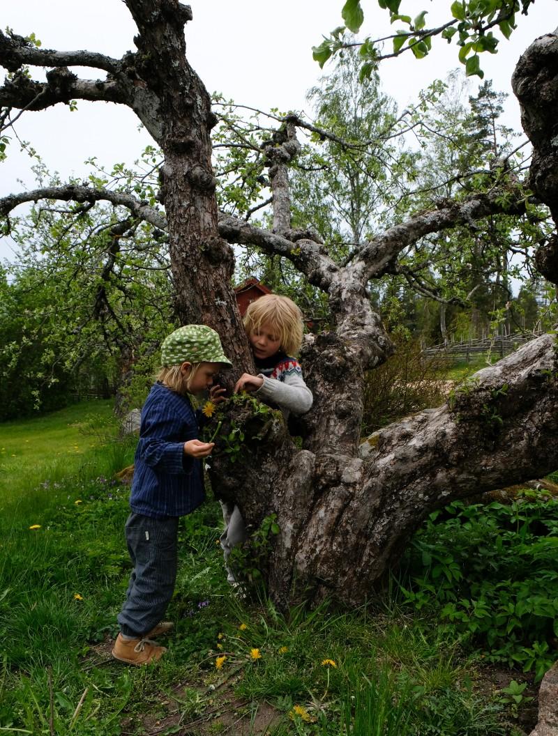auf den Spuren Astrid Lindgrens