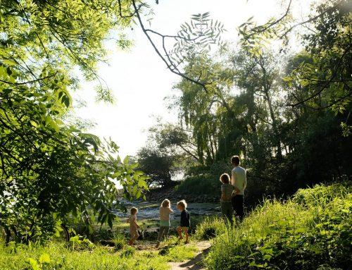 Tadaa, ich hab da eine Idee! Zeigen wir uns unsere Lieblingsorte in der Natur?