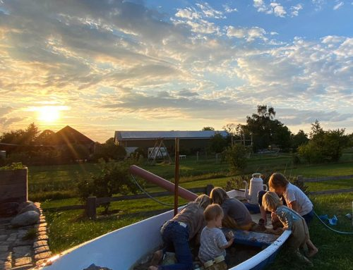 Hübsch hier in Daheimien: Die besten Ideen für Garten und Terrasse (ohne viel Arbeit)